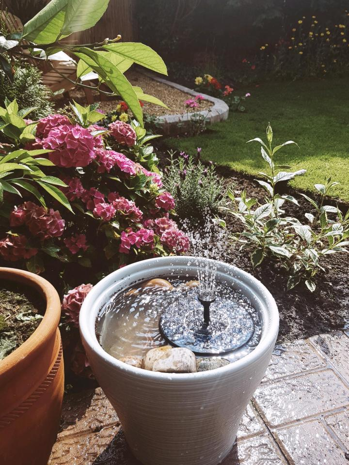 DIY Mini Pond and Fountain